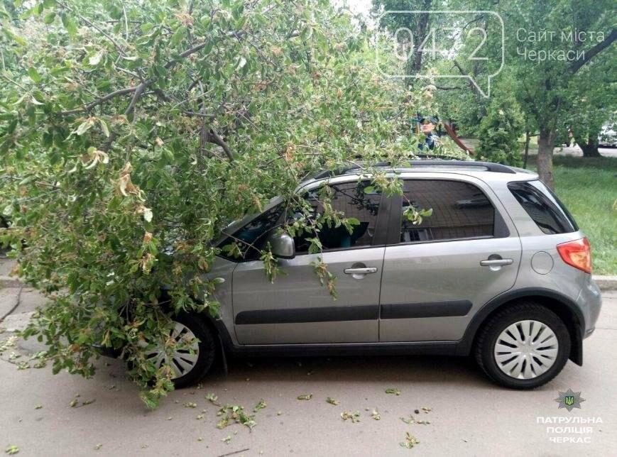 Невезуха: у Черкасах на автомобіль упало дерево (ФОТО), фото-1