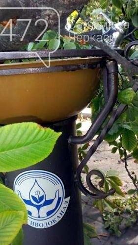 Від пориву вітру дерево впало на питний фонтанчик у Черкасах (ФОТО), фото-2