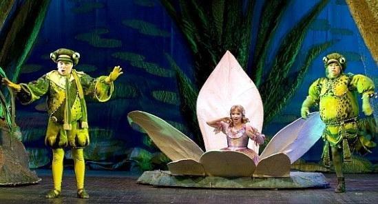 """Вихованиці єдиної в обласному центрі школи балету готують масштабну постановку """"Дюймовочки"""" (ВІДЕО), фото-1"""