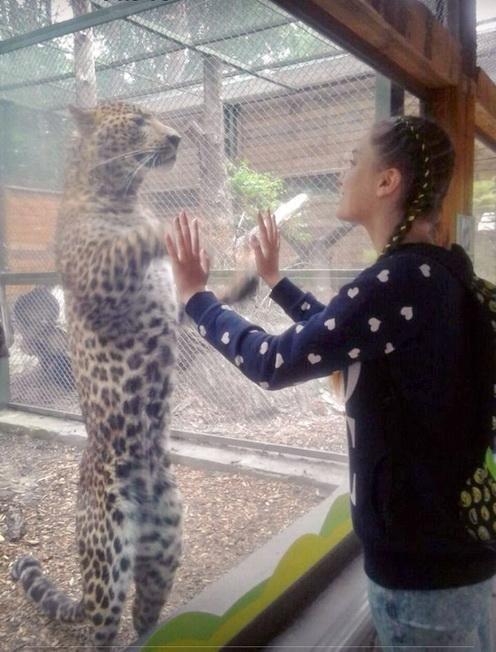 У Черкаському зоопарку тварини вітаються з відвідувачами та позують для фото (ФОТО, ВІДЕО), фото-2