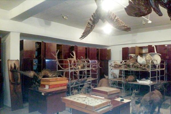 Черкаський обласний краєзнавчий музей потребує порятунку (ФОТО), фото-1
