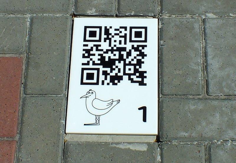 Крилата стежка: туристичний маршрут із QR-кодами презентували у Черкасах, фото-1